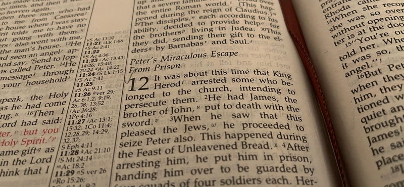 Acts 12:1-23